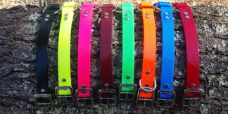 Beta Dog Collars